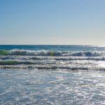 Photo of waves in the Pacific Ocean taken by staff, S. Pemberton