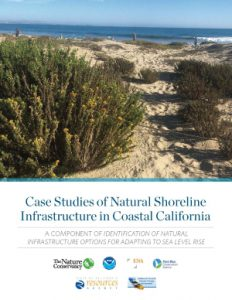 Cover page image of Case Studies of Natural Shoreline Infrastructure in California A component of Identification of Natural Infrastructure Options for Adapting to Sea Level Rise.