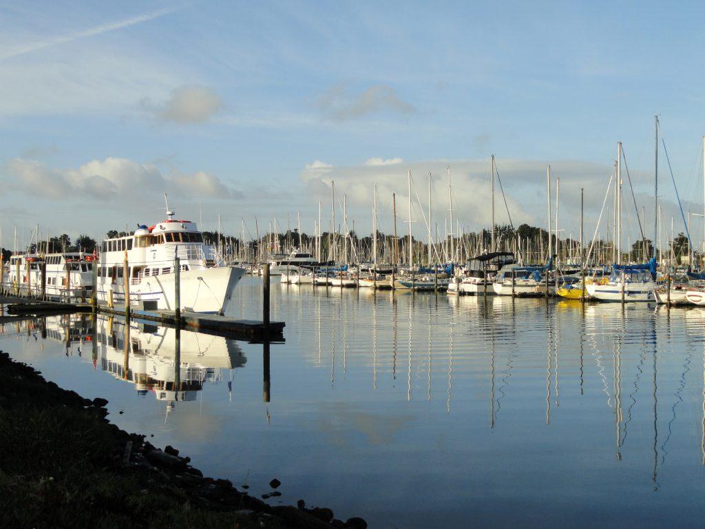Berkeley Marina. Lined with sail boats and yachts.