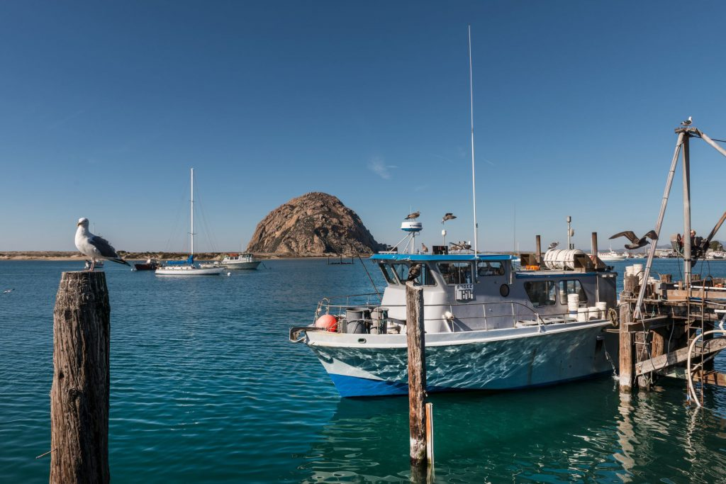 Morro Bay Harbor, and the looming Morro Rock that dominates it, on California's Central Coast.