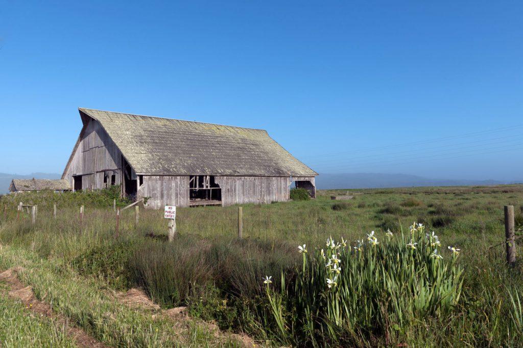 Old wooden barn in Arcata, California.