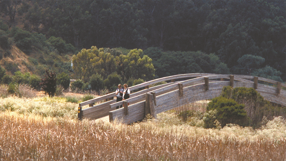 People walking on a trail in the East Bay Regional Park District.