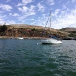 Sailboat moored in Tomales Bay
